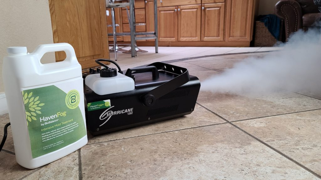 Finding the Source of Mold in Your Home